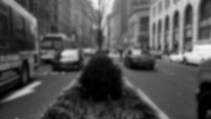 vid streets